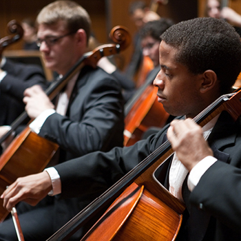 Orchestra musicians performing