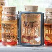glass vials containing liquid and objects