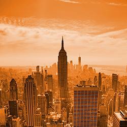 UT in New York