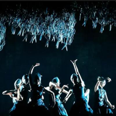scenes from Under Siege dance drama