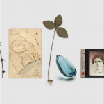 A compass, map, plant, rock, and picture